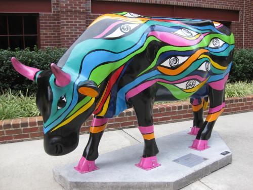 Bulls in Durham