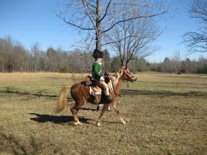 Loyalist Cavalry Officer