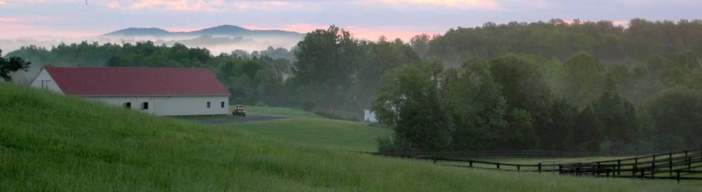 Farm at dawn