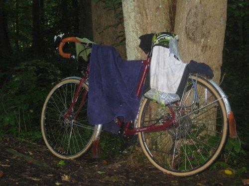 Bike as clothesline.